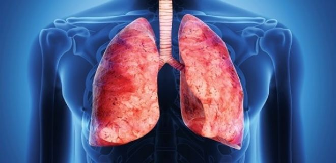 Akciğer Temizliği İçin Bitkisel Yöntemler