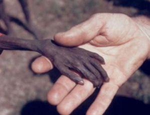 Önceliğin İnsan Olduğu Dünyadan İnsanlık Dramları