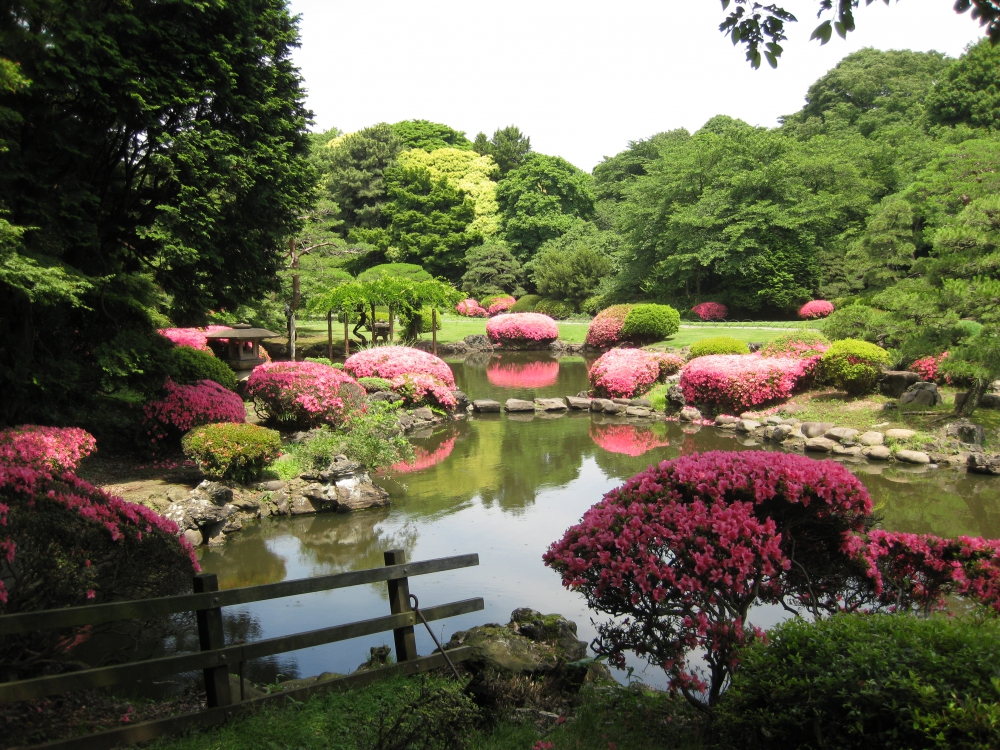 Tokyo'da Gezip Görmeniz Gereken Yerler galerisi resim 1