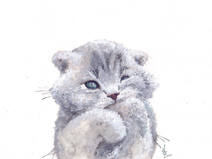Kolay Hayvan Cizimleri Kedi