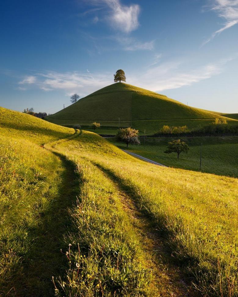 Doğa Aşığı Fotoğrafçının Çektiği Muazzam Fotoğraflar galerisi resim 10