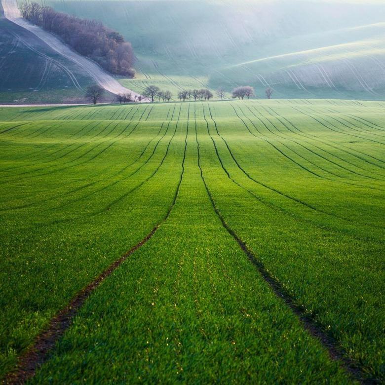 Doğa Aşığı Fotoğrafçının Çektiği Muazzam Fotoğraflar galerisi resim 15