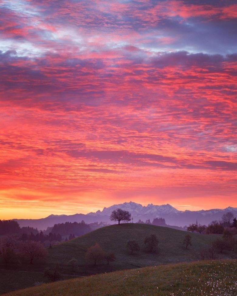 Doğa Aşığı Fotoğrafçının Çektiği Muazzam Fotoğraflar galerisi resim 18