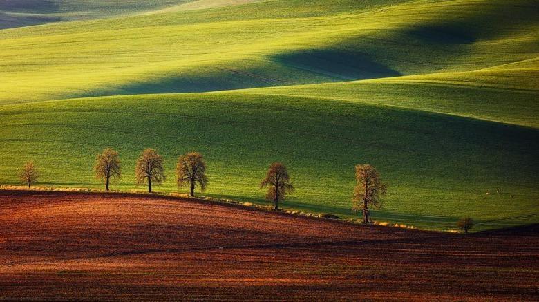 Doğa Aşığı Fotoğrafçının Çektiği Muazzam Fotoğraflar galerisi resim 19