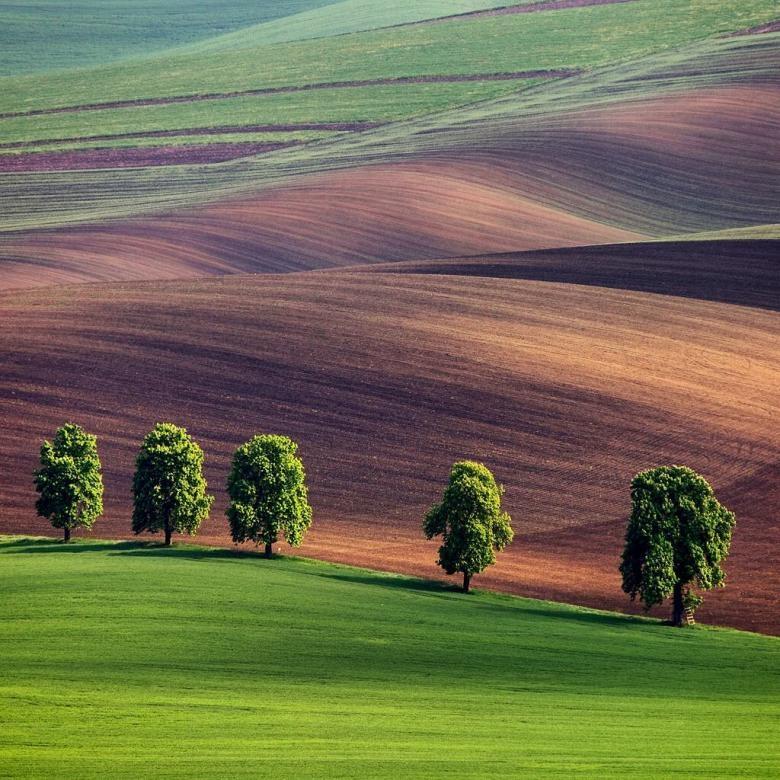 Doğa Aşığı Fotoğrafçının Çektiği Muazzam Fotoğraflar galerisi resim 20
