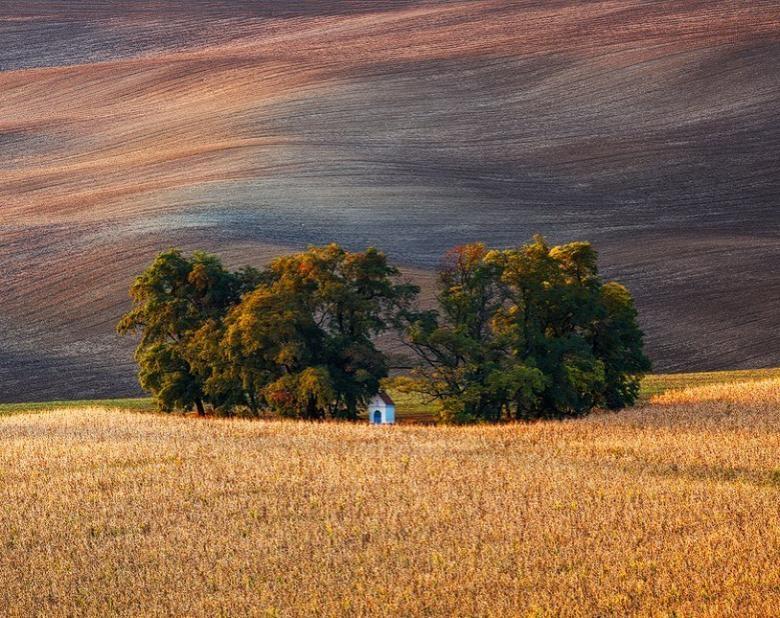 Doğa Aşığı Fotoğrafçının Çektiği Muazzam Fotoğraflar galerisi resim 22