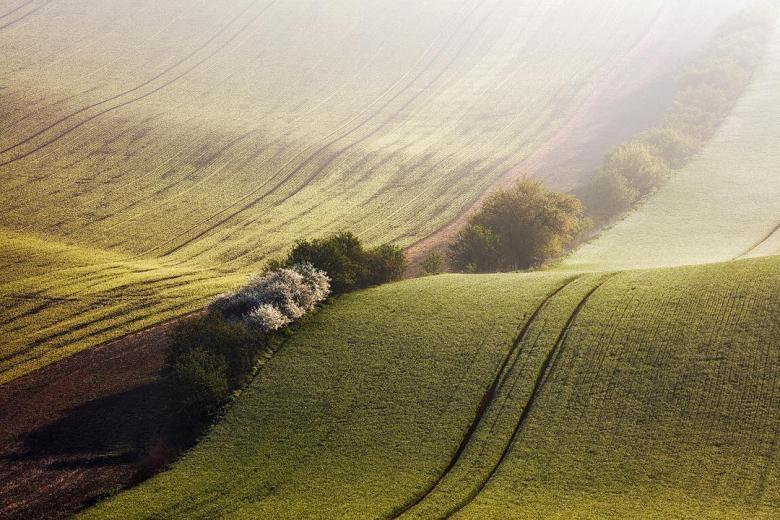 Doğa Aşığı Fotoğrafçının Çektiği Muazzam Fotoğraflar galerisi resim 23