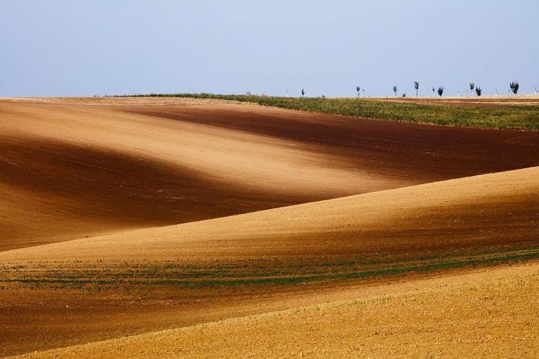 Doğa Aşığı Fotoğrafçının Çektiği Muazzam Fotoğraflar galerisi resim 6
