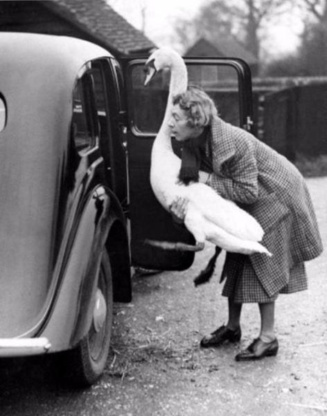 Hayvanlarının Sahipleriyle Çekilmiş Nostaljik Fotoğrafları galerisi resim 8