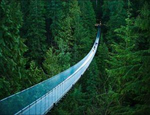Sıradışı Asma Köprüler ve Manzaraları