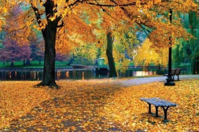 Sonbaharda Gidilebilecek Şehirler galerisi resim 5