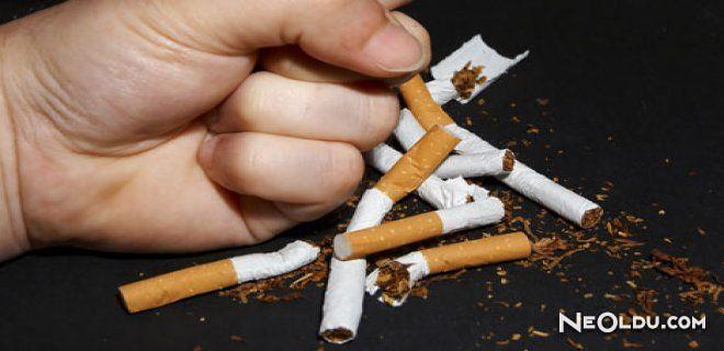 ABD'li Bilim Adamlarından Sigara İçin Büyük Buluş