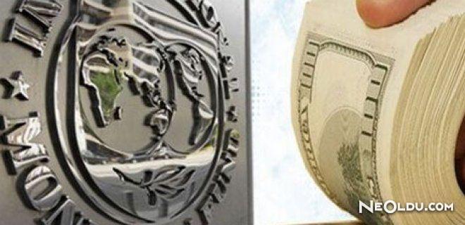 IMF Nedir? Görevleri Nelerdir?