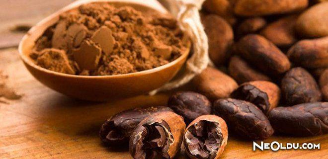 Rüyada Kakao Görmek Ne Anlama Gelir?