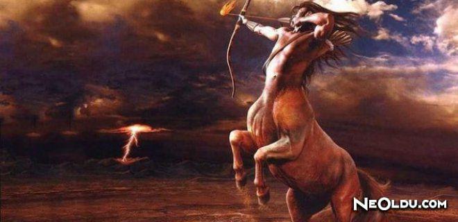 At Burcu Erkeği Genel Özellikleri