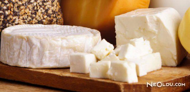 Peynir Yapım Eğitim Etkinliği