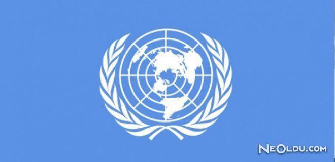 Birleşmiş Milletler ve Uzmanlık Kuruluşları