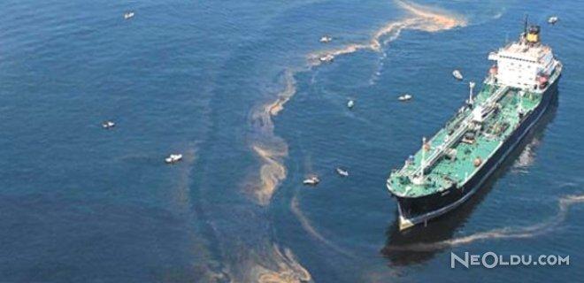 Çevreci Pilot Gemiyi İhbar Etti