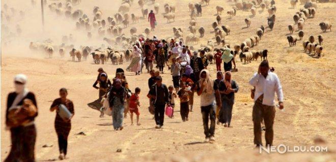 IŞİD'ciler Bir Anneye Çocuğunu Yedirdi!
