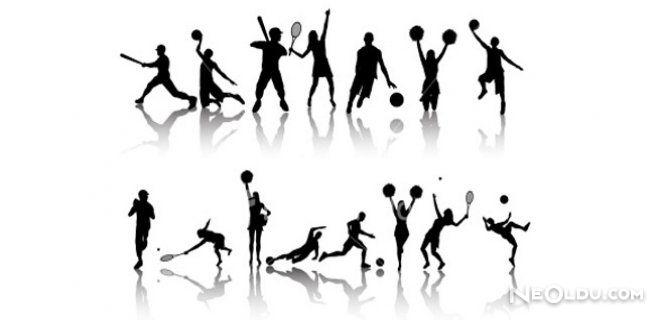 Spor Dallarının Dört Yeni Yüzü