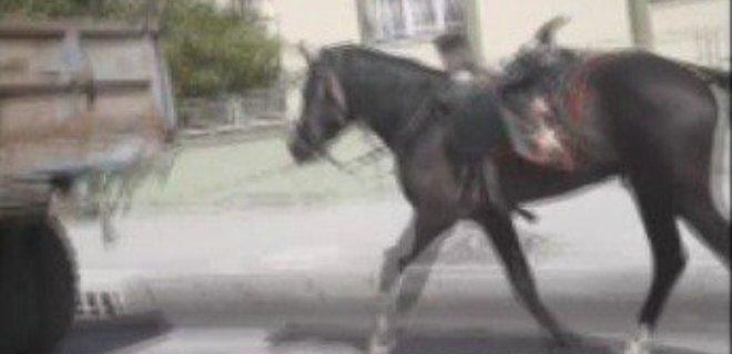 Atı Aracına Bağlayıp Kilometrelerce Koşturdu!