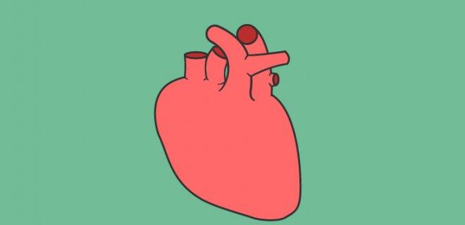 Anjina Pektoris (Kalp Spazmı) Teşhisi ve Tedavi Yöntemleri