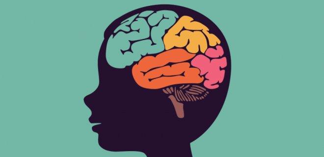 Beyin Hakkında Bilinmesi Gerekenler