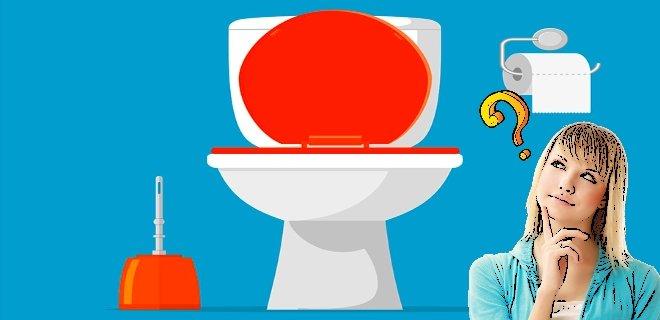Alafranga Tuvaletin Zararları ve Faydaları Hakkında Bilgi