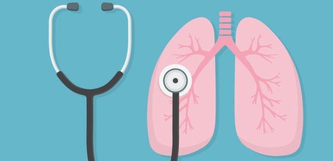 Akciğere İyi Gelen Bitkiler, Yiyecekler ve Besinler
