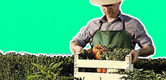Organik Tarım Nedir - Nasıl Yapılır - Faydaları Nelerdir?
