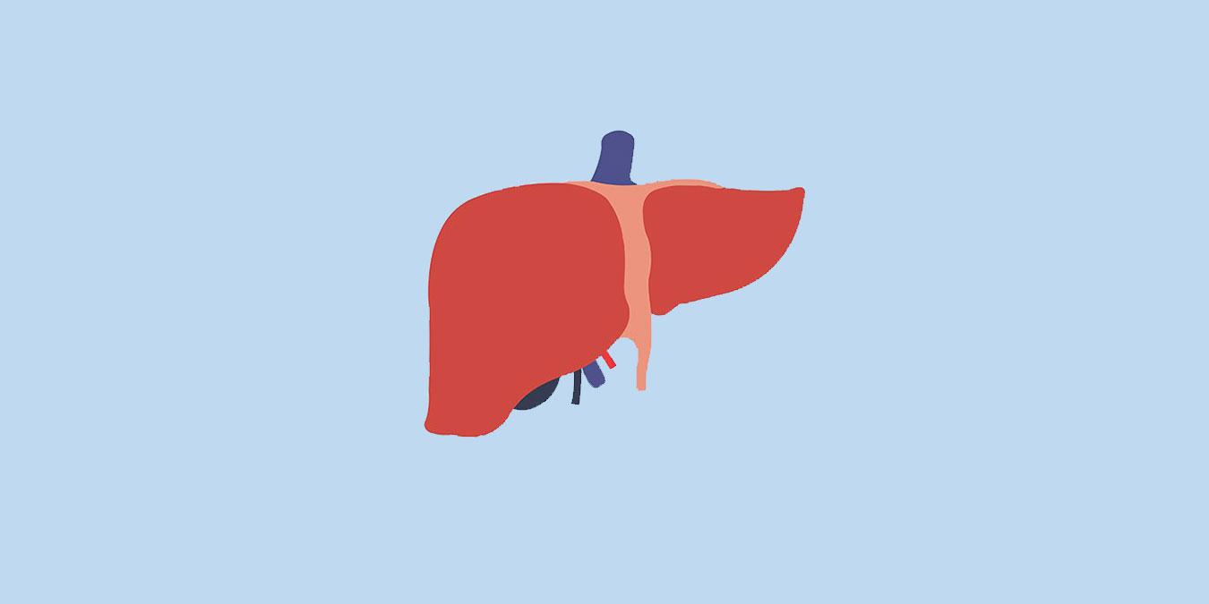 Karaciğer Sağlığı İçin Dikkat Edilmesi Gerekenler