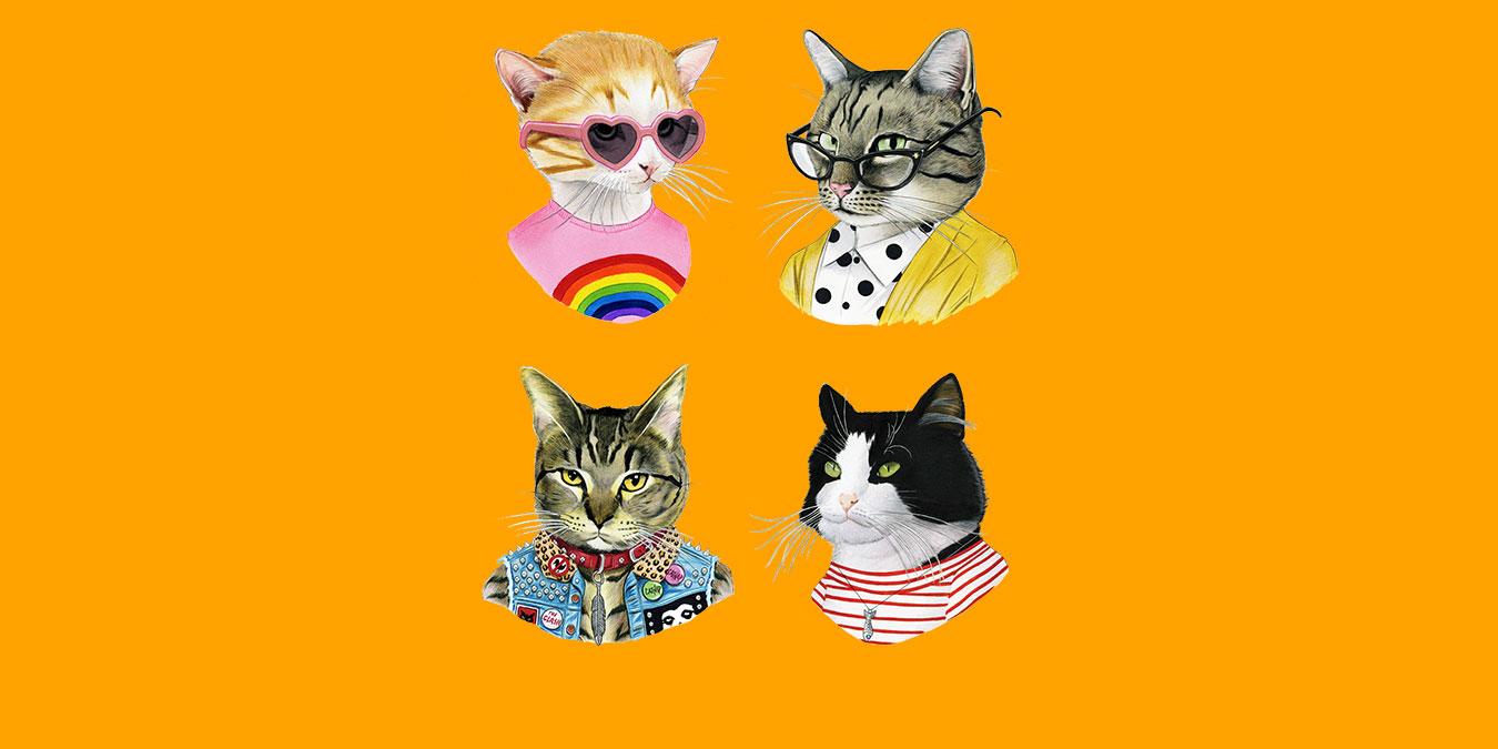 Kedi Türleri, Cinsleri ve Irkları – İlgi Duyulan 51 Kedi Türü ve Özellikleri