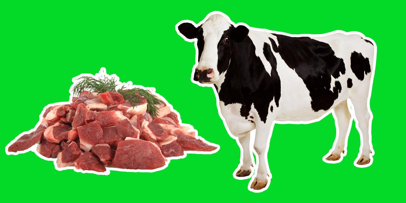 Kurban Eti Nasıl Saklanmalıdır?