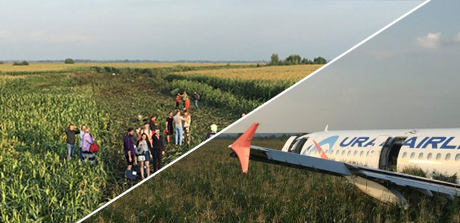 Uçağı Mısır Tarlasına İndirdiler, 226 Yolcunun Hayatını Kurtardılar! Dünya Bunu Konuşuyor!
