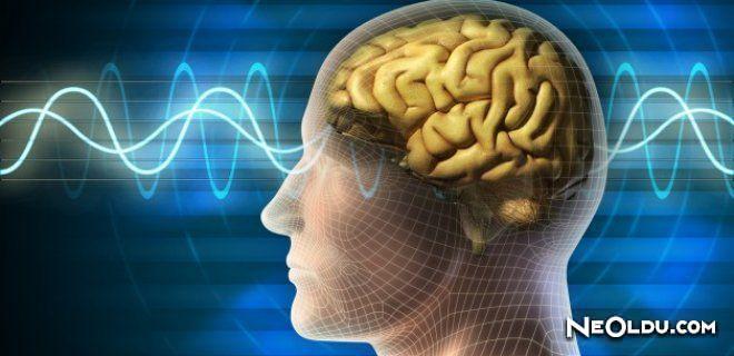 Beyninizi Zinde Tutmanın 25 Yolu