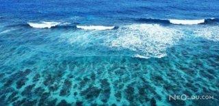 Deniz Suyunun Faydaları & Deniz Kumu ve Deniz Suyu Hakkında Bilgi