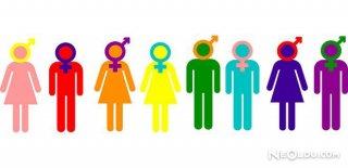 Toplumsal Cinsiyet Rolleri Nedir ?