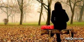 Sonbaharda Yapraklar Neden Dökülüp Sararır?