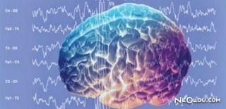 İnsan Beyni Dışarıdan Kontrol Edilecek!