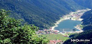 Trabzon'un Meşhur Lezzetleri