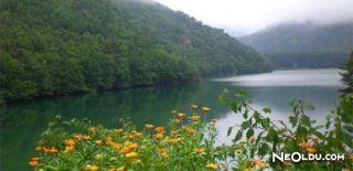 Bingöl'ün Doğal Güzellikleri