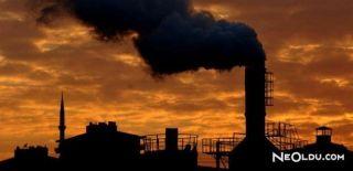 Havadaki Karbondioksitten Karbon Lifi Üretildi