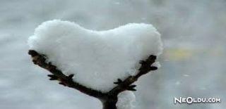 Kar Nedir? Nasıl Oluşur?