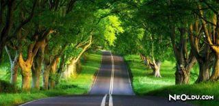 Uzun Yol Lezzet Durakları