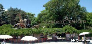 Türkiye'de Yer Alan Hayvanat Bahçeleri
