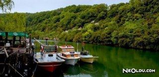İstanbul'da Hafta Sonu Doğada Gezilecek Yerler