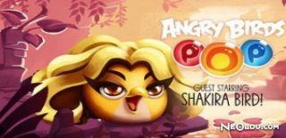 Angry Birds Ailesinin Yeni Üyesi