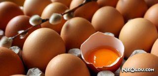 Yumurtanın Önemi ve Kullanma Şekilleri