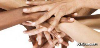 Irk ve Etnik Grup Arasındaki Farklar Nelerdir?