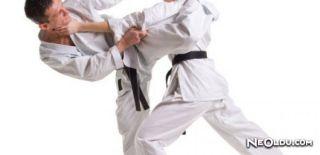 Bir Spor Dalı Olarak: Karate